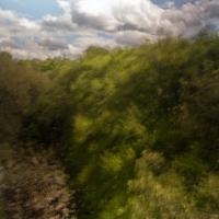 SAM_1514.jpg