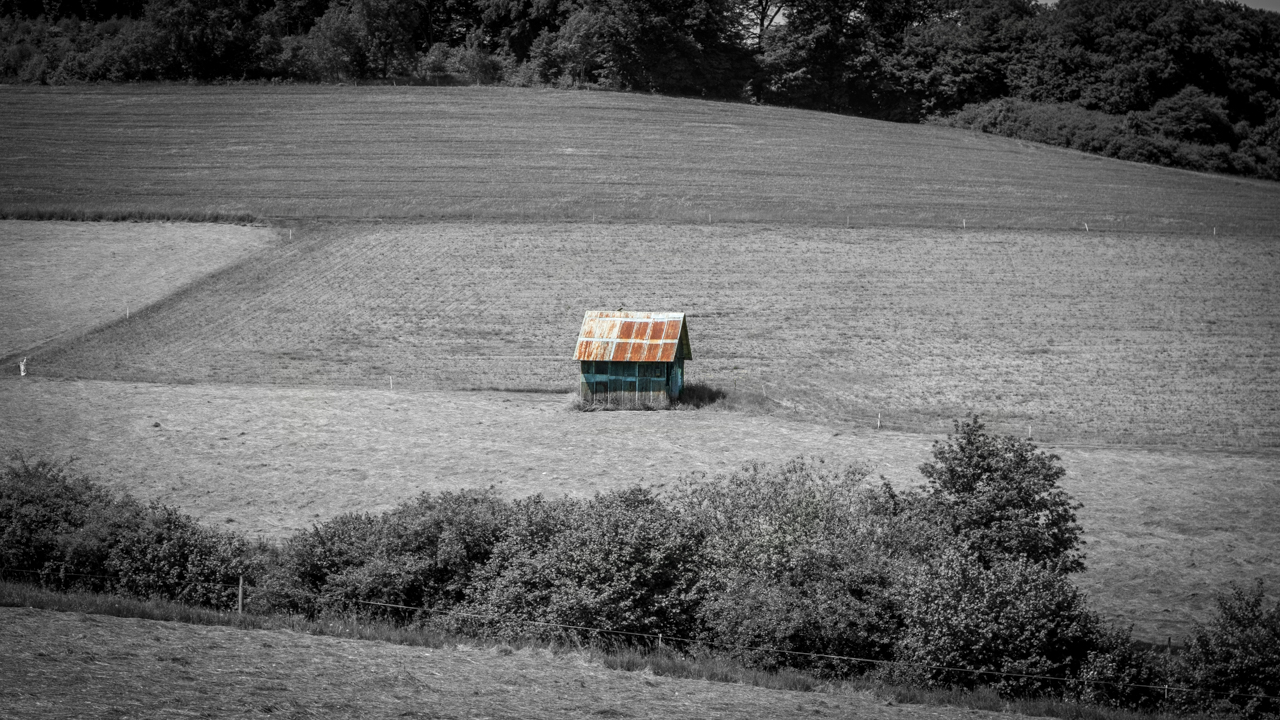 single meschede Krefeld