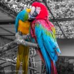 Zoo Hamm